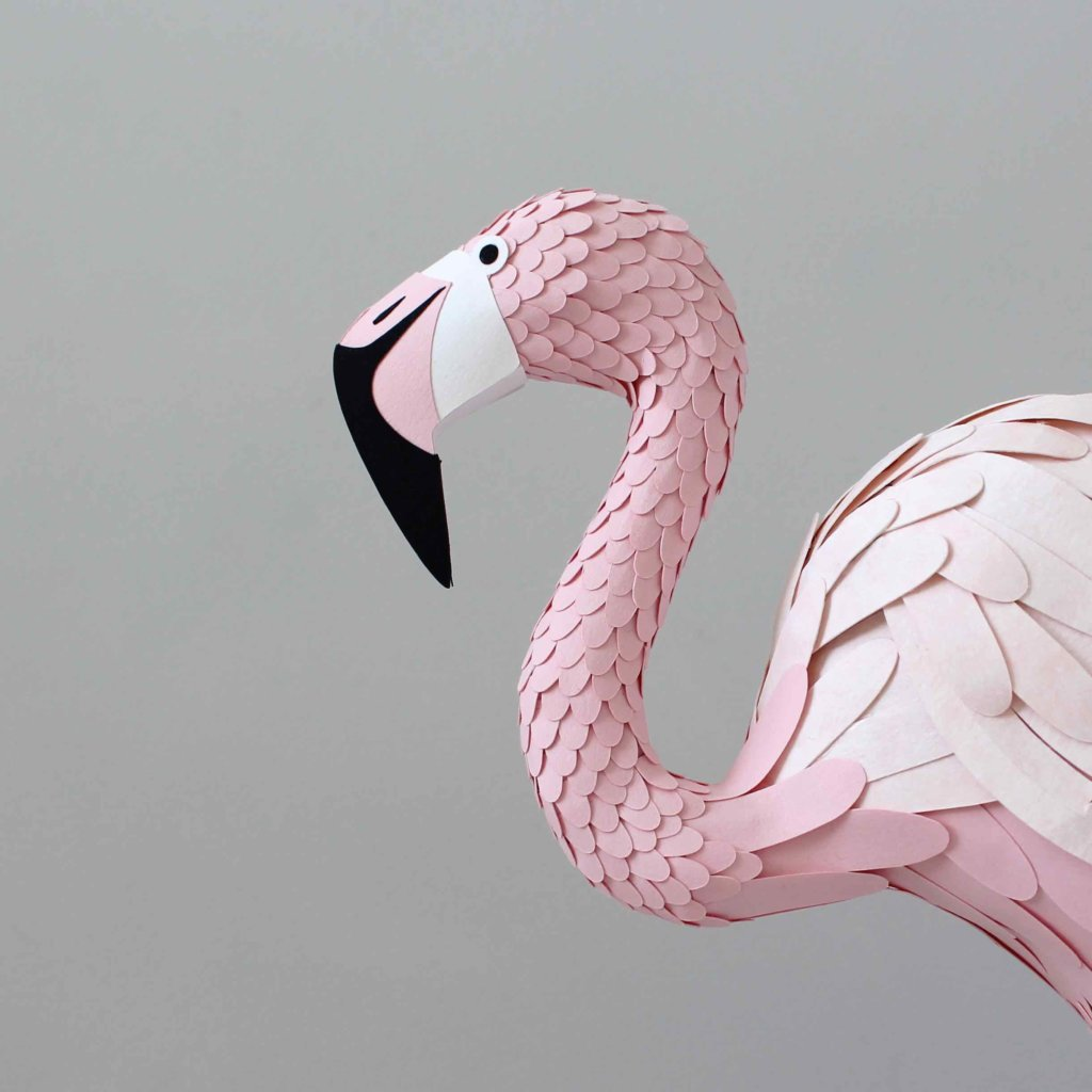 Interview_SarahMatthews_Flamingo_IMPRESSIONORIGINALE