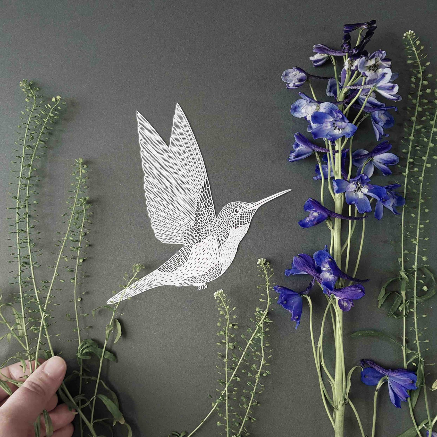 Impression_Originale_itw_Pippa_hummingbird photo prep