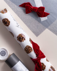 IOR-NVEL360RGE50_BOW_paired_Farandole_of_pine_cones_SET